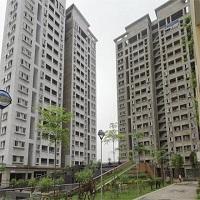 Năm 2020, điều chỉnh thị trường bất động sản về nhà giá thấp